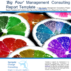 Management Consultancy Report Template